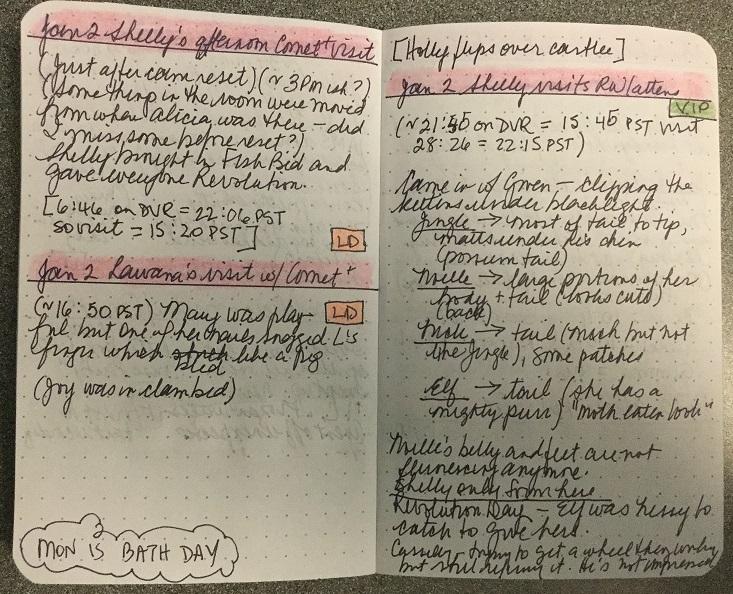 tkrecaps daily notebook