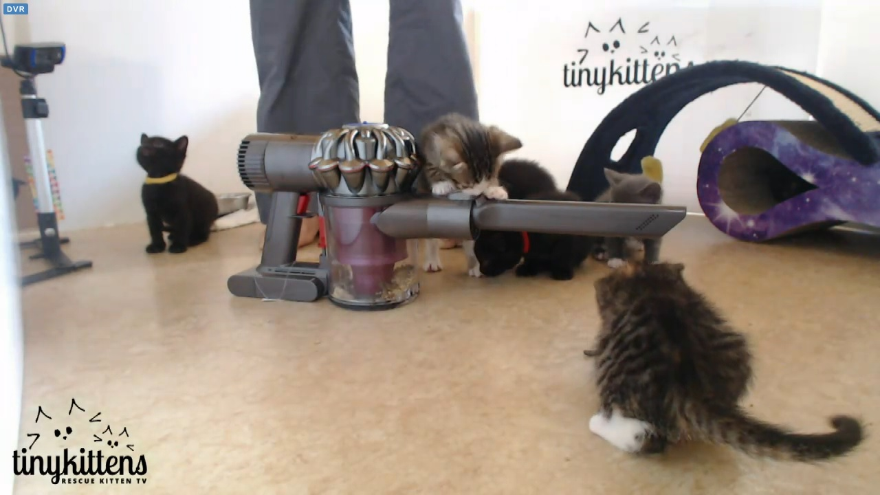Who's afraid of the vacuum? 2015-09-07