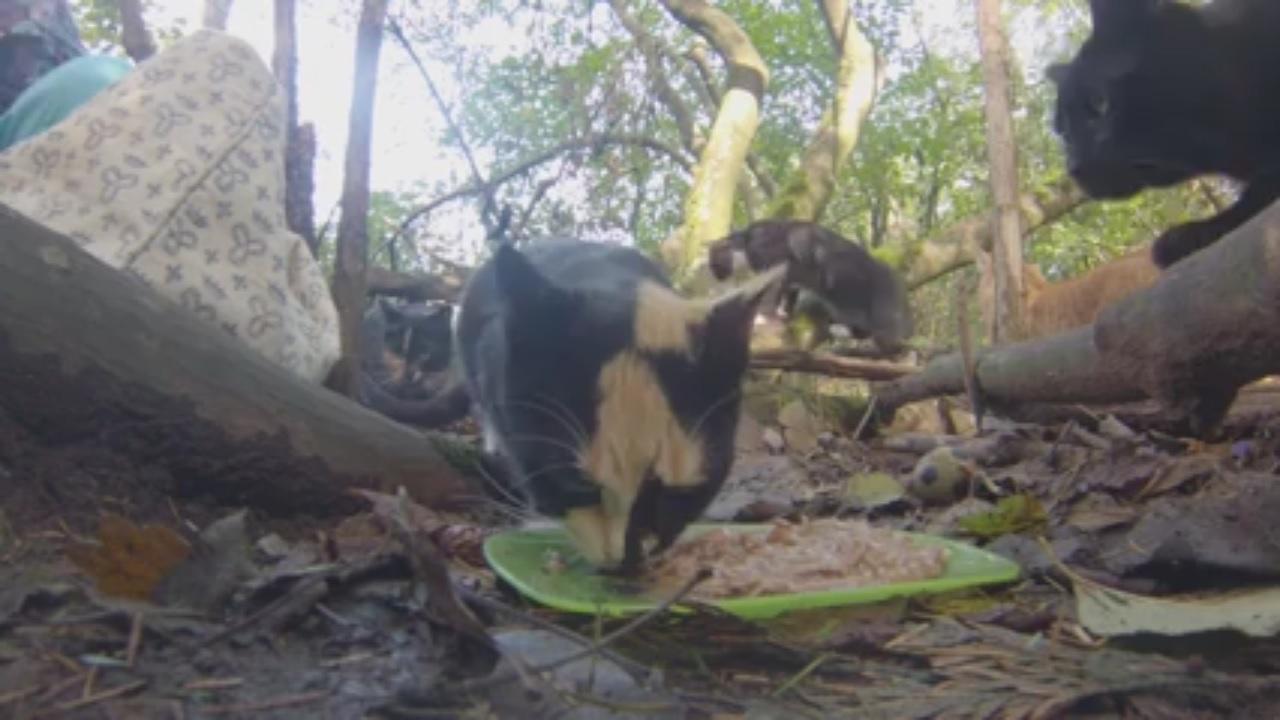 Sloane eating 2015-09-21