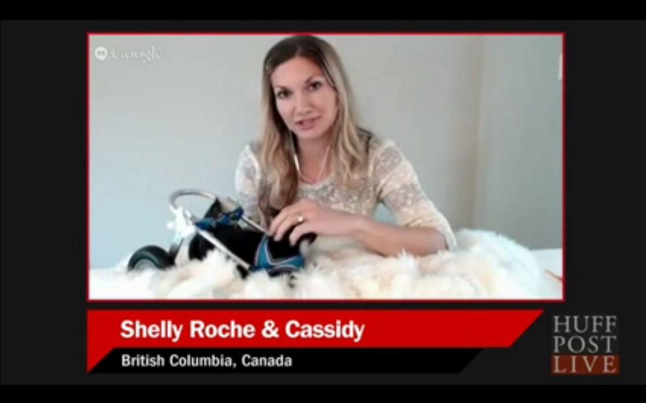 Shelly and Cassidy on HuffPost Live 2015-10-13